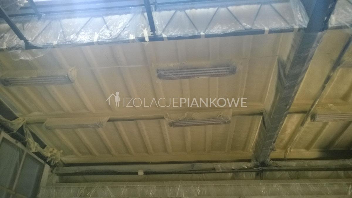 ocieplenie natryskowe dachów betonowych